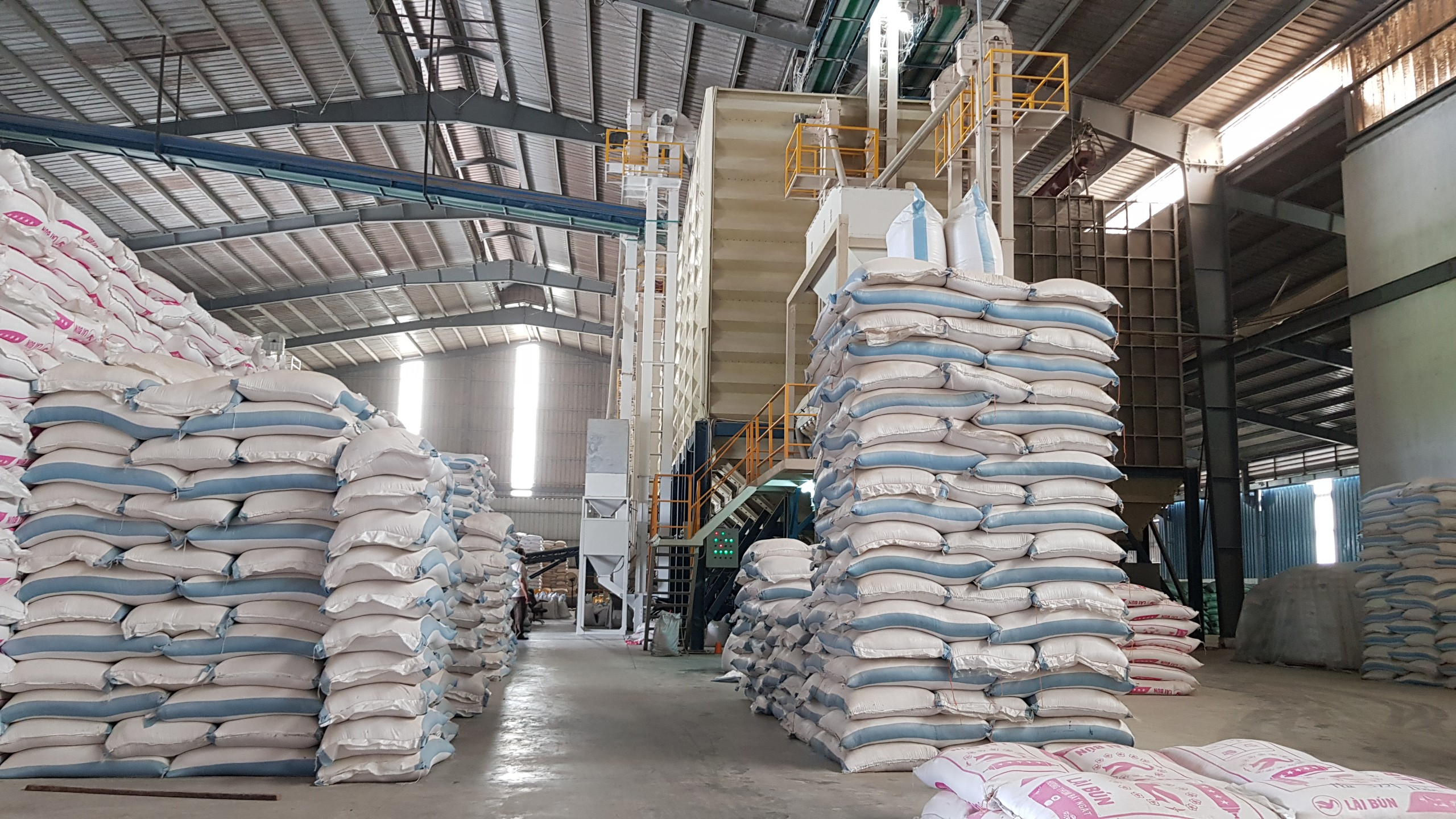 giá thành của gạo