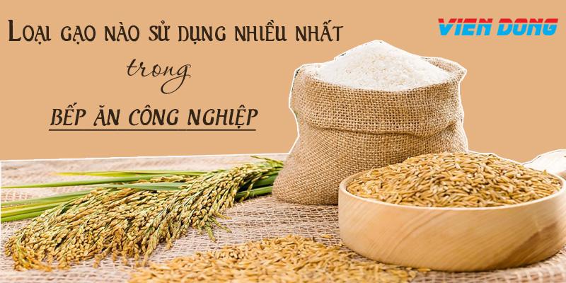 loại gạo nào nấu cơm ngon